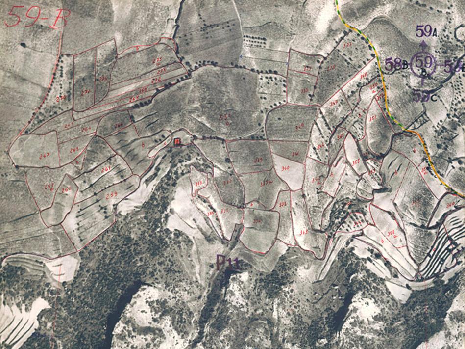 Vista aérea en 1956 de los terrenos de viñedo en la Sierra de Yerga